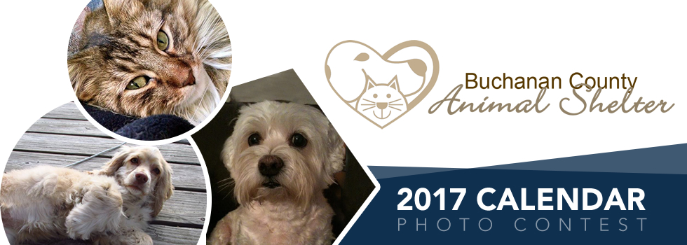 Calendar Photography Contest : Buchanan county animal shelter