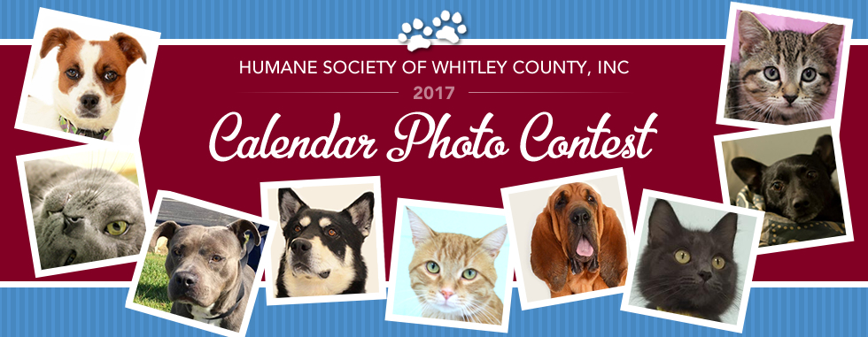 Calendar Photography Contest : Humane society of whitley county inc calendar