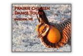 prairie-chicken-dance-tours