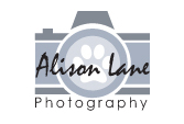 Alison Lane Photography