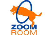 Zoom Room Redondo Beach