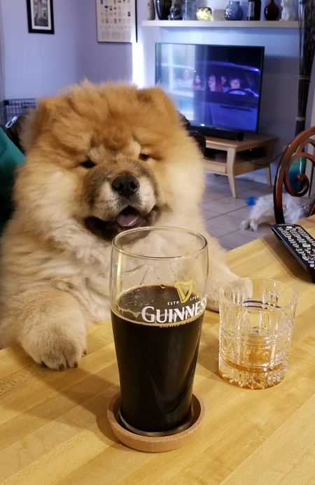 "Oliver - ""One beer,one shot,one Chow"""