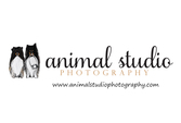 Animal Studio Photography