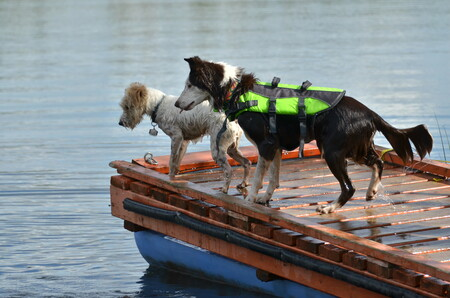 Envy (in lifejacket) and Bukkle Up