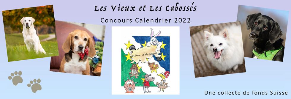 Calendrier Des Concours 2022 Sofia Rothen Photographie | Les Vieux et Les Cabossés Concours