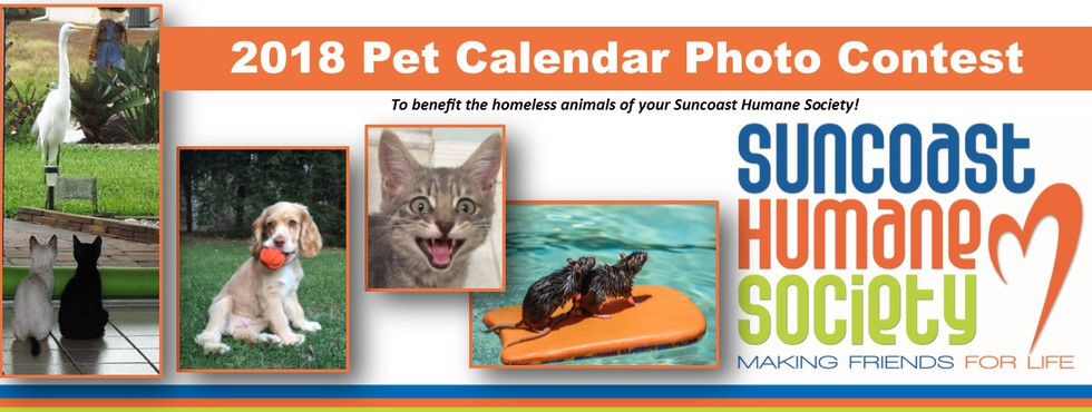 Calendar Photography Submissions : Suncoast humane society s