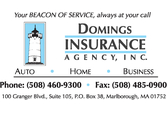 Domings Insurance